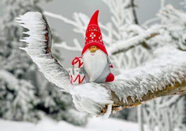 świąteczny ełk